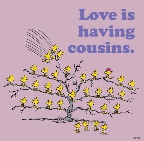 Cousins & Cousinen